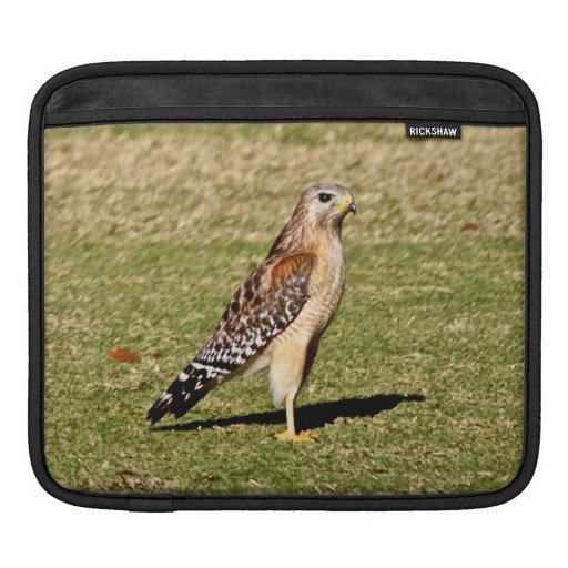 Red Shouldered Hawk on Golf Cours Sleeves For iPads