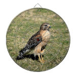 Red Shouldered Hawk on Golf Course Dart Boards