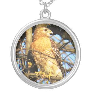 Red-shouldered Hawk Pendant