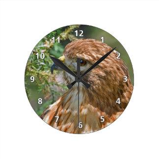 Red-shouldered Hawk Round Clock