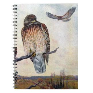 Red-shouldered Hawks Vintage Illustration Spiral Notebook