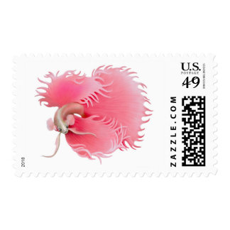 Red Siamese Fighting Fish Postage