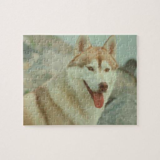 Red Siberian Husky Dog Puzzle