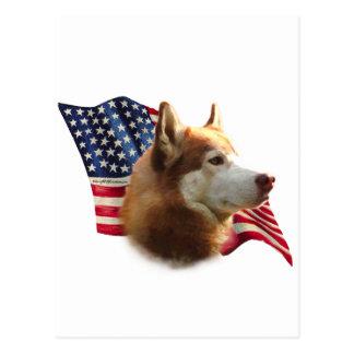 Red Siberian Husky Flag Postcard