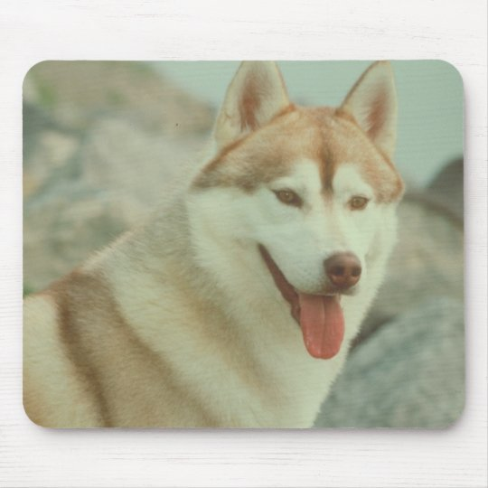 Red Siberian Husky Mouse Pad