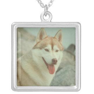 Red Siberian Husky Necklace