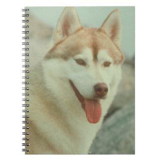 Red Siberian Husky Notebook