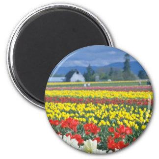 Red Skagit Valley, Mount Rainier, Washington, USA 2 Inch Round Magnet