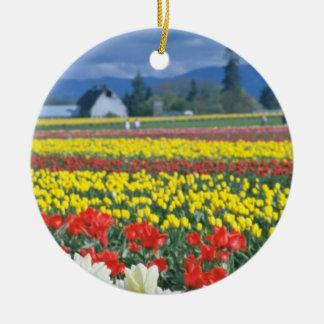 Red Skagit Valley, Mount Rainier, Washington, USA Double-Sided Ceramic Round Christmas Ornament