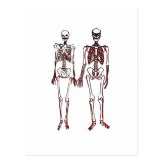 Red Skeleton Couple Postcard