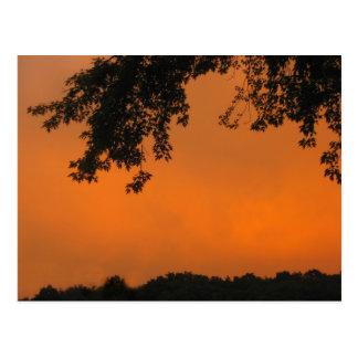Red Skies at Night Postcard