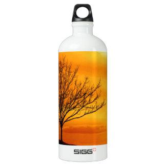 Red Sky Water Bottle