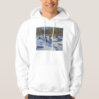 Red sledge Lomberdale Hall Derbyshire 2014 Hoodie