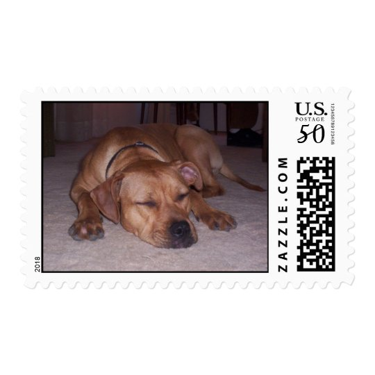 red sleepy pit bull postage