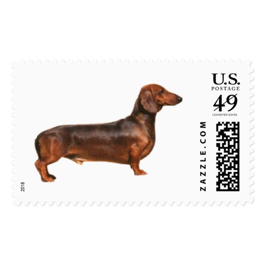 Red Smooth Hair Dachshund Stamp