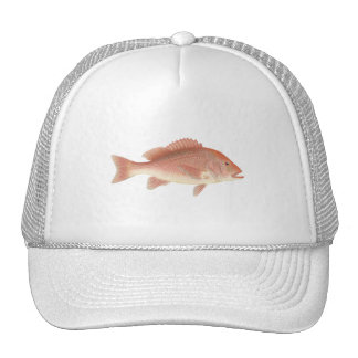 Red Snapper Art Trucker Hat