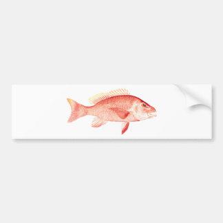 Red Snapper Bumper Sticker