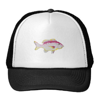 RED SNAPPER FISH1 MESH HATS