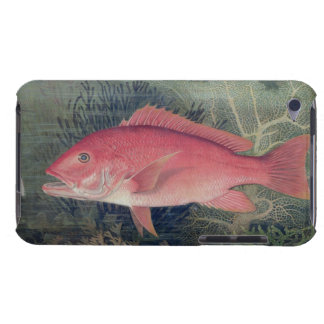 Red Snapper, from 'Game Fishes of the United State iPod Touch Case-Mate Case