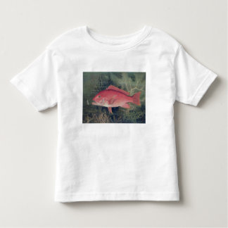 Red Snapper, from 'Game Fishes of the United State Toddler T-shirt