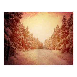 Red Snowy Road, Conifer, CO Postcard