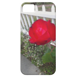 Red Solo Rose iPhone SE/5/5s Case
