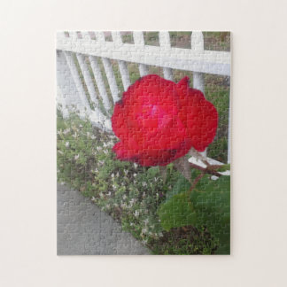 Red Solo Rose Jigsaw Puzzle
