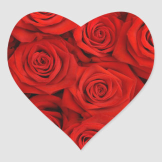 Red Spectacular Roses Heart Sticker