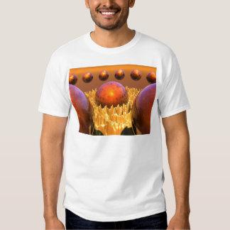 Red Spheres Tee Shirt