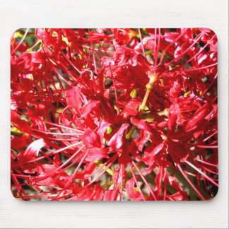 Red Spider Lilies Mouse Pad