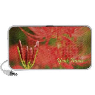 Red Spider Lily Amaryllis Autumn Resurrection Hope iPod Speaker