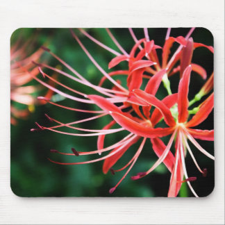 Red Spider Lily Computer Mousepad