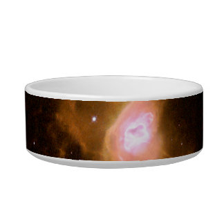 Red Spider Nebula Space Cat Bowl