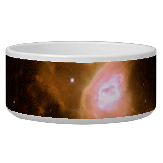 Red Spider Nebula Space Pet Food Bowl