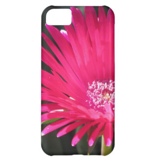 Red Spike Ice Plant Bloom iPhone 5C Case