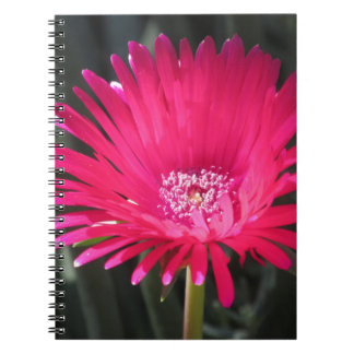 Red Spike Ice Plant Bloom Notebook