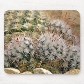 Red spiky cactus mouse pad