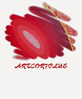 Red Spirals Ladies 3 Quarter Sleeve Raglan TShirt