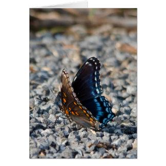 Red Spotte Purple Butterfly Card