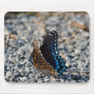 Red Spotte Purple Butterfly Mouse Pad
