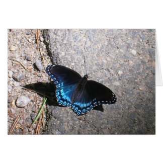 Red Spotted Admiral Butterfly Greeting Card