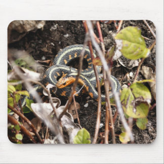 Red-spotted Gartersnake Mouse Pad
