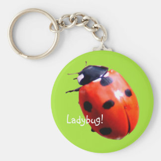 Red Spotted Ladybug Keychain