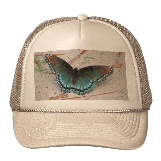 Red Spotted Purple Butterfly Hat