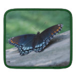Red-spotted Purple Butterfly iPad Sleeve