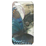 Red-Spotted Purple Butterfly iPhone 5C Case
