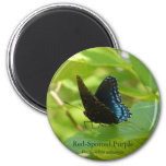 Red-Spotted Purple Butterfly on an Elm Leaf Fridge Magnet