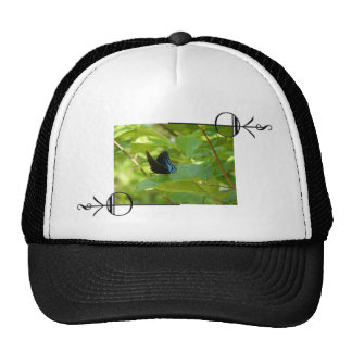Red-Spotted Purple Butterfly on an Elm Leaf Trucker Hat