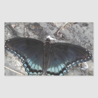 red-spotted purple butterfly rectangular sticker