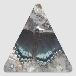 red-spotted purple butterfly triangle sticker